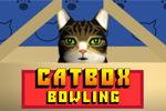 cat-box-bowling