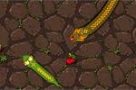 snake-attack